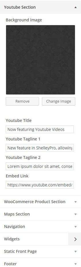 customizer-youtube