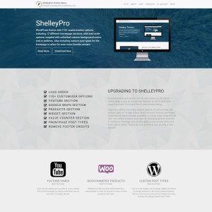 shelleypro-screenshot-full-length-800-cropped-height